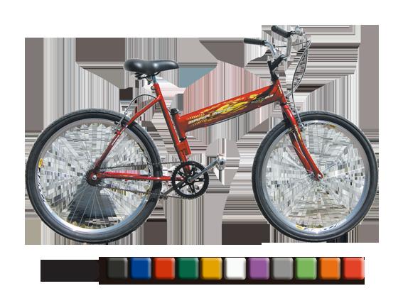 bicicleta-maria-mole