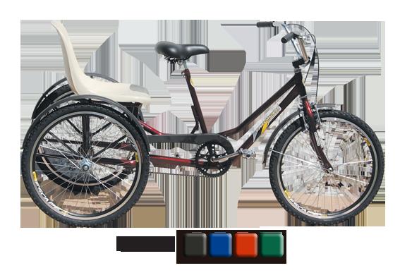 triciclo-carona